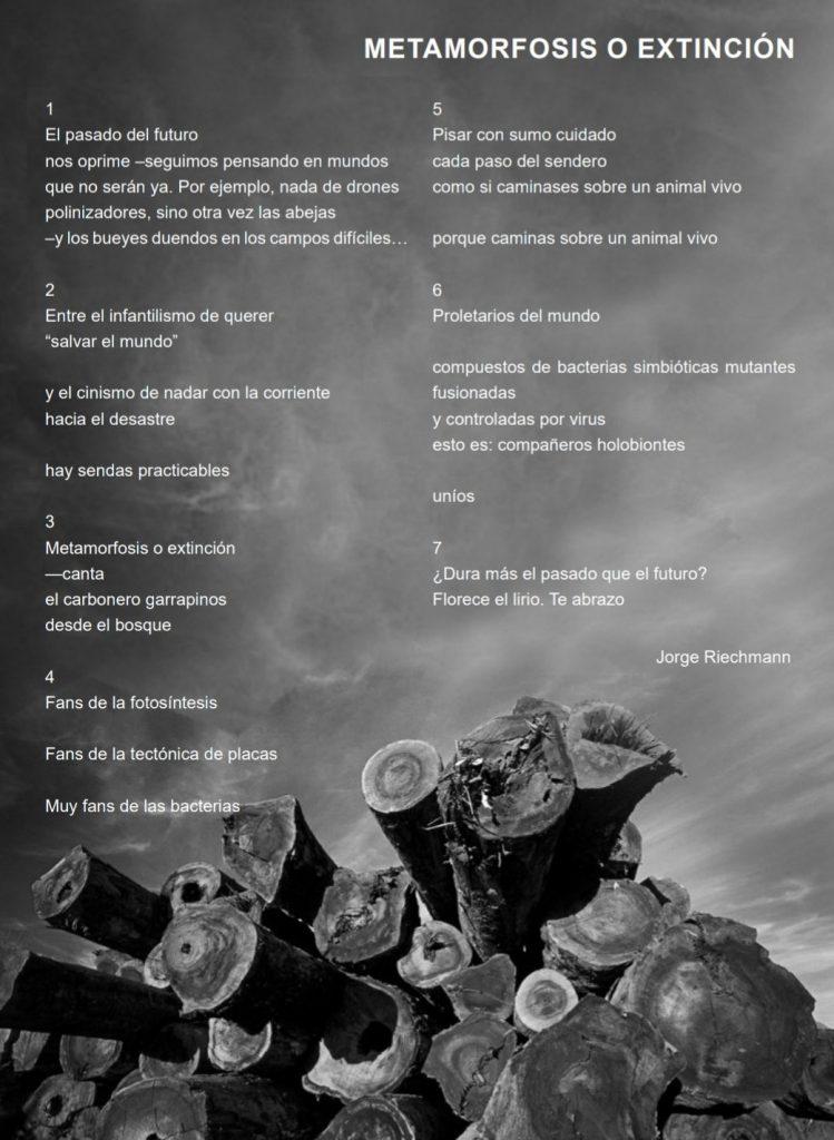 METAMORFOSIS O EXTINCIÓN en Humanidad en red, 5.6.20
